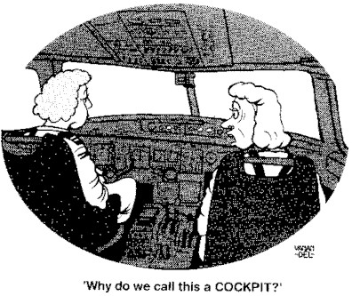 Cartoon by pilotfriend.com