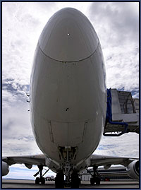 The nose of an Airplane as seen from the apron