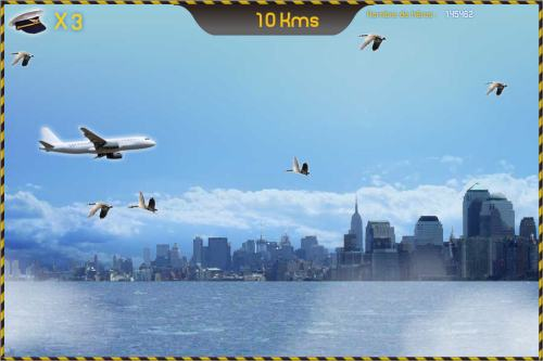 Bird Strike Game