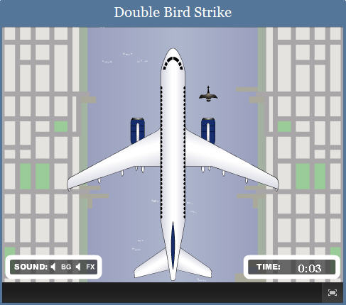 Double Bird Strike Game