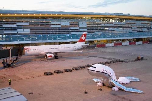 Plane Landing in Zürich - c by aleksandramir.info