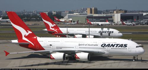 2 Qantas Airbus A380s - photo by David Morrell - Avid Creations - on Airliners.net